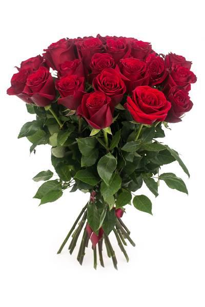 Роза Премиум 80 см.