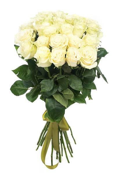 Роза белая 80 см.