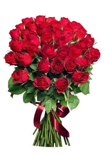 Роза красная 40 см.